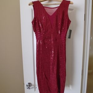 Enfocus Red Jeweled Body Con Petite size 10P